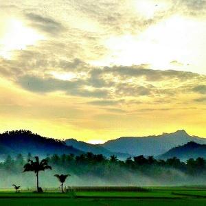 Suasana Kasembon di pagi hari