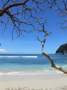 View apikkkk di pantai Ngalur