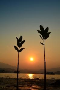 Dua sejoli nih lagi nikmati sunset