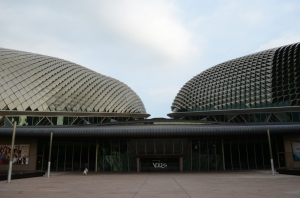 Durian kembar XD