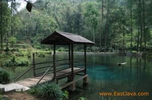 Kondisi Rambut Monte yang masih bebas warung | sumber: www.eastjava.com