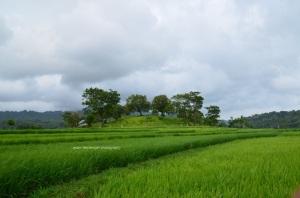 Bukit yang menyegarkan mata (itu makam) (diambil sewaktu perjalanan pulang dari air Murtalaya)