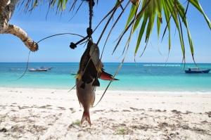 Hasil tangkapan ikan warga yang saya temui di pantai Otan